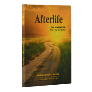 AFTERLIFE THE JEWISH VIEW