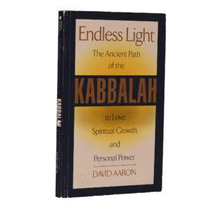 ENDLESS LIGHT RABBI DAVID AARON