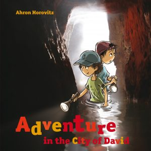 ADVENTURE IN CITY DAVID HC
