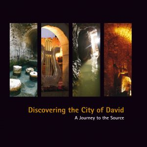 DISCOVERING CITY OF DAVID HC