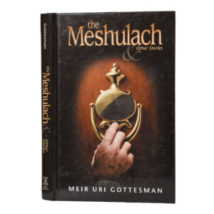 THE MESHULACH
