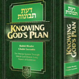 KNOWING G-D'S PLAN