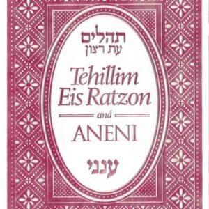 TEHILLIM-ANENI MINI FLEXIBLE GREY