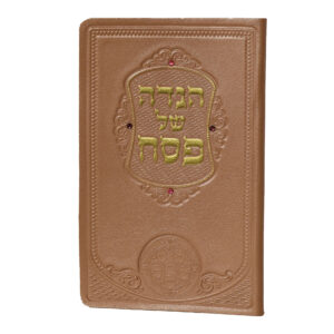 HAGGADAH LEATHER PB PINK