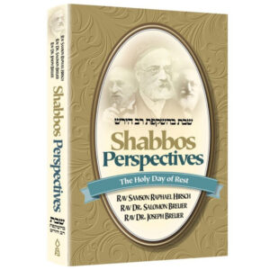 SHABBOS PERSPECTIVES