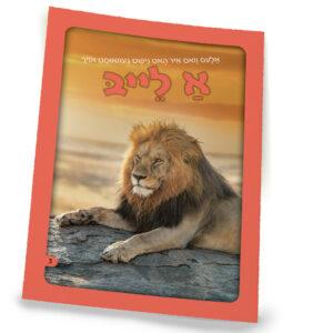 אריה 3 אידיש רכה
