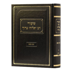 שיעורי רבי אליהו ברוך בבא קמא