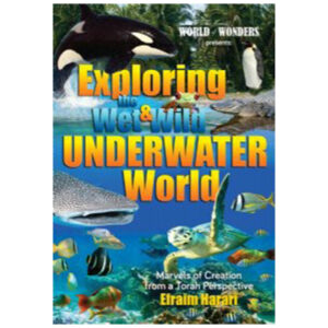 EXPLORING THE WET AND WILD UNDERWATER WO