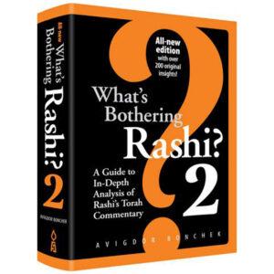 WHATS BOTHERING RASHI VAIKRA