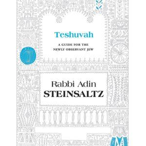 TESHUVAH STEINSALZ HC