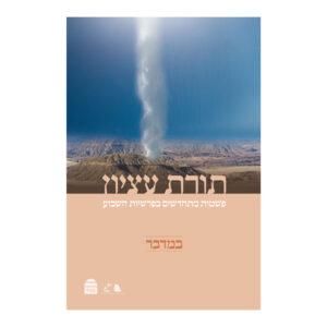 תורת עציון במדבר